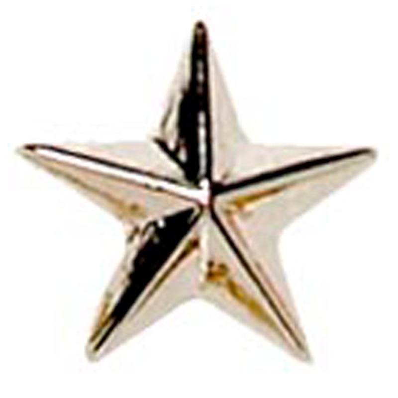 8mm Silver Star Detailed Lapel Badge