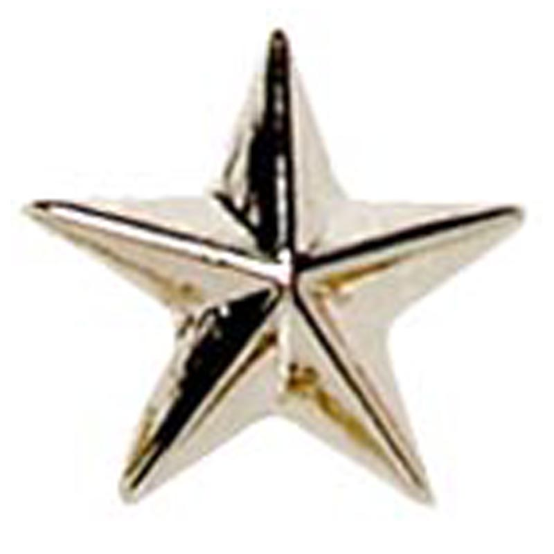 Silver Star Detailed Lapel Badge