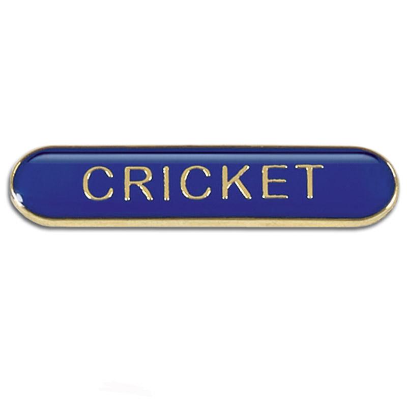 Blue Cricket Rectangle School Metal Pin Badge