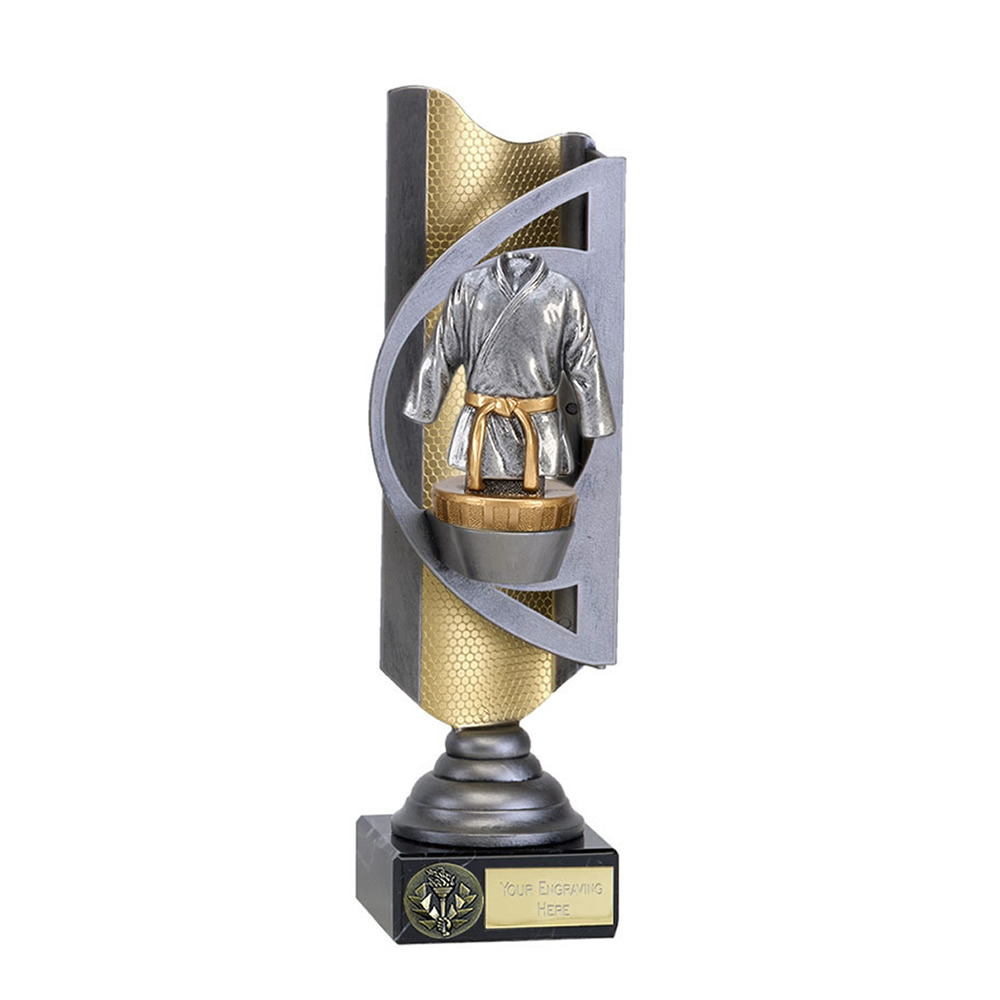 28cm Martial Arts figure on Infinity Award