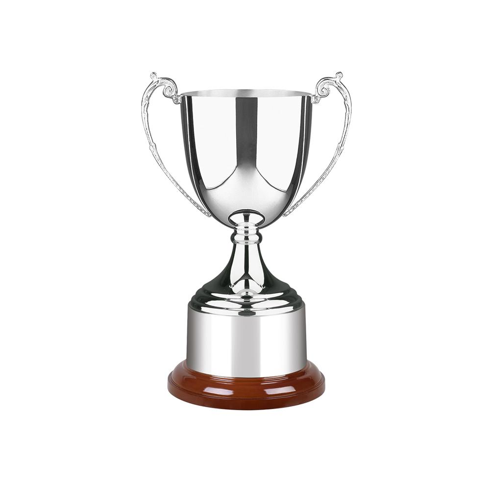 11 Inch Delicate Handle Design Patriot & Colonial Trophy Cup