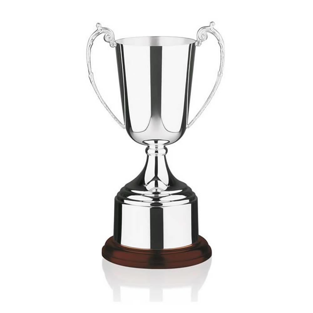 11 Inch Tall Cup & Rosewood Base Patriot & Colonial Trophy Cup
