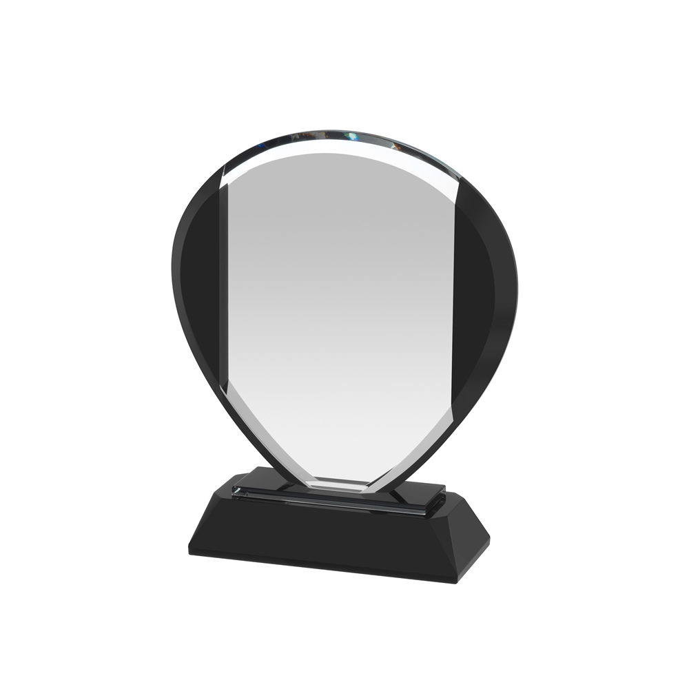 8 Inch Oval Optical Crystal Award