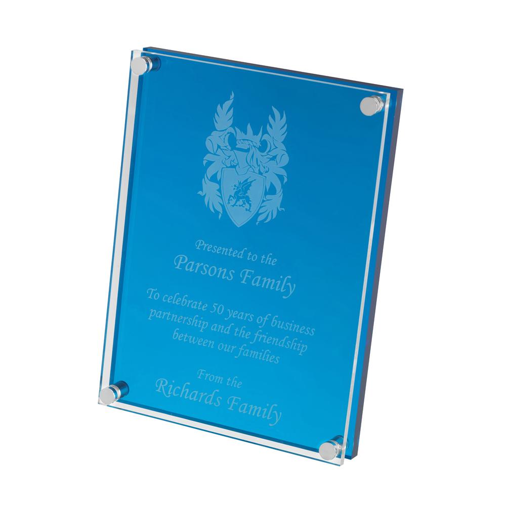 8 x 6 x 10mm Simple Blue & Clear Acrylic Award