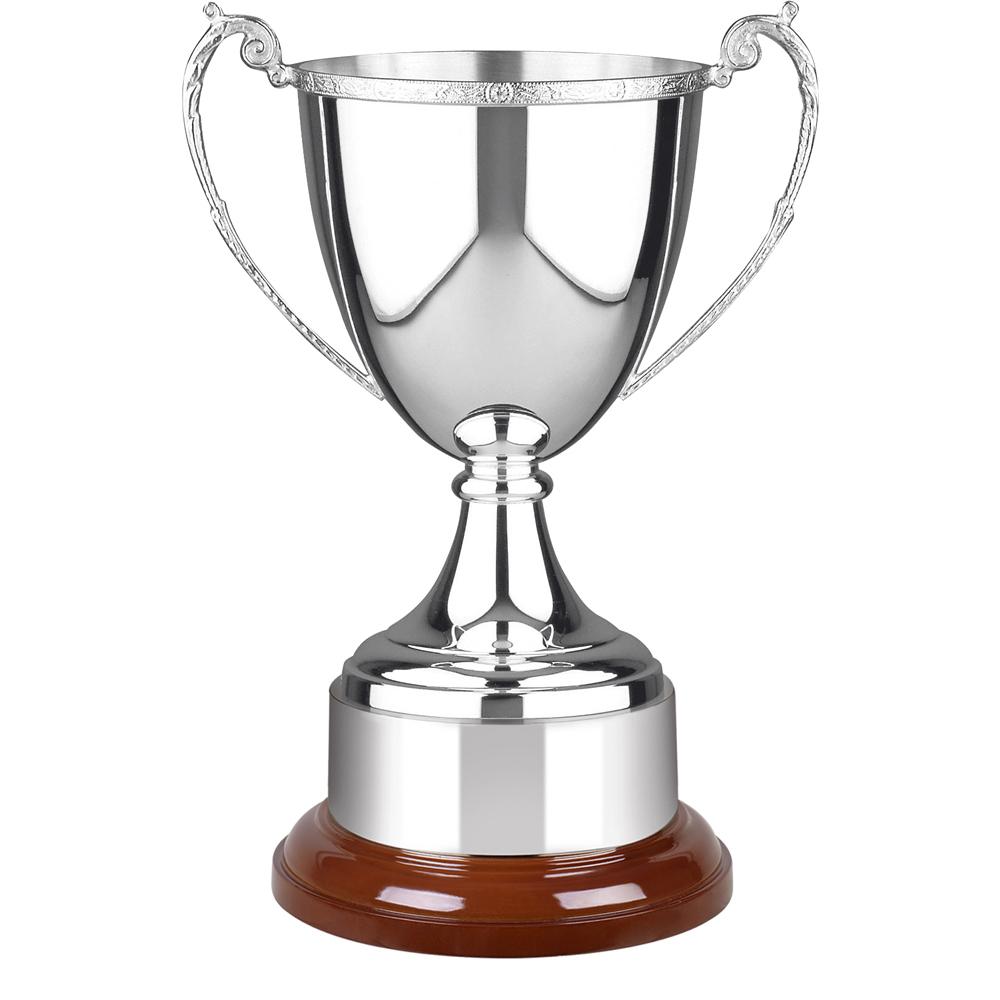 12 Inch Decorative Rim & Wooden Plinth Celtic Trophy Cup