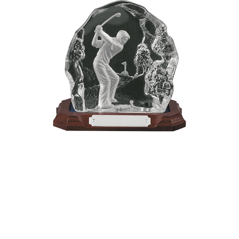 8 Inch Tee Shot Golf Amity Award