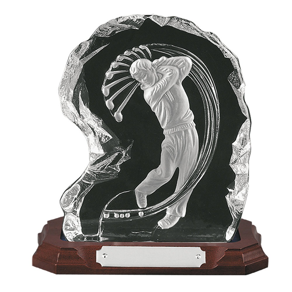 8 Inch Swing Golf Amity Award