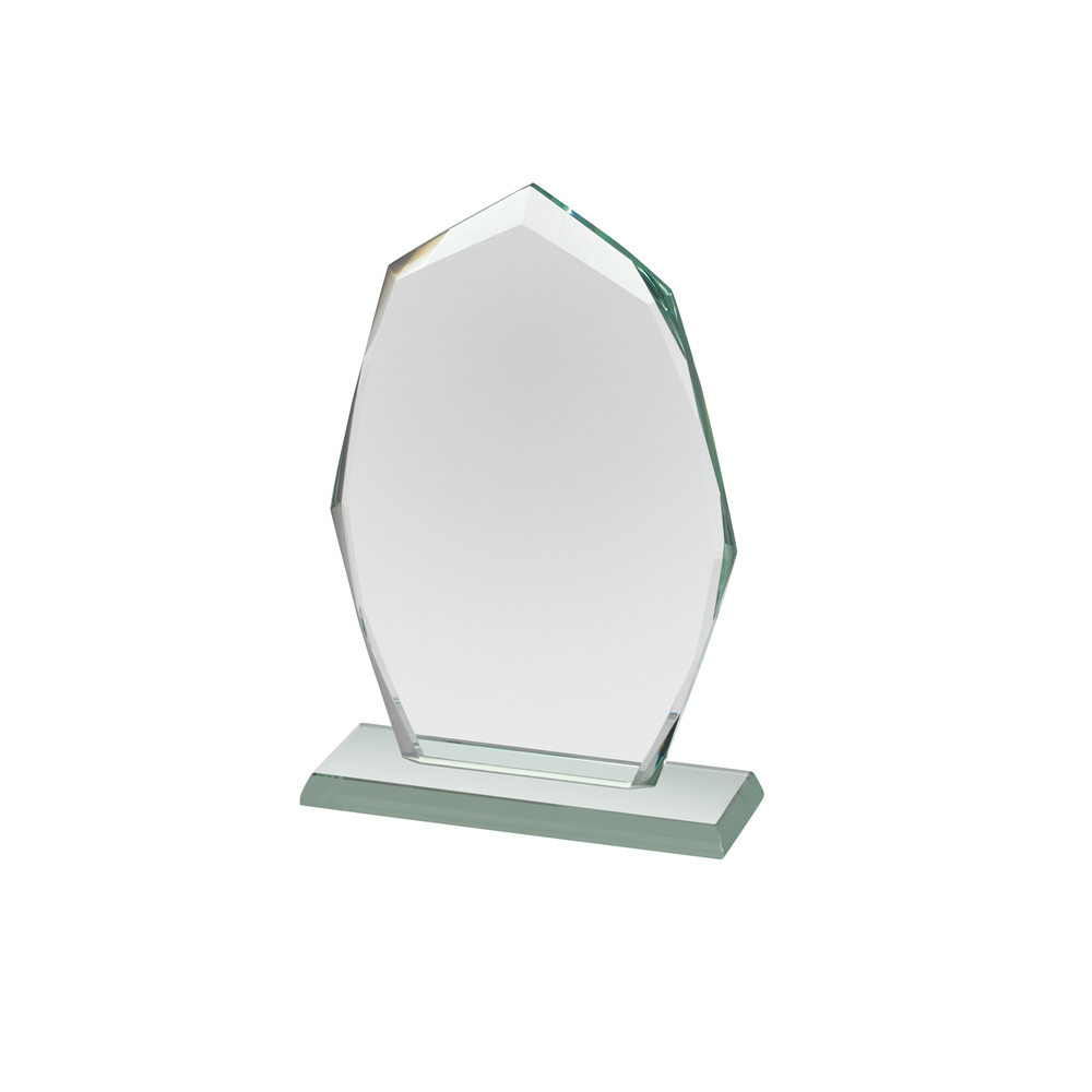 5 Inch Mini Optics Award