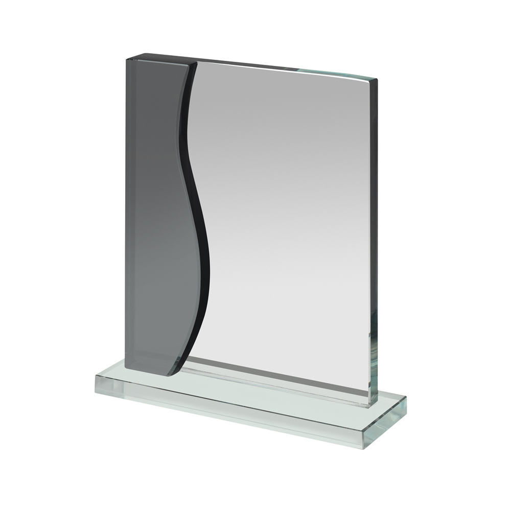 6 Inch Clear & Black Portrait Optics Award