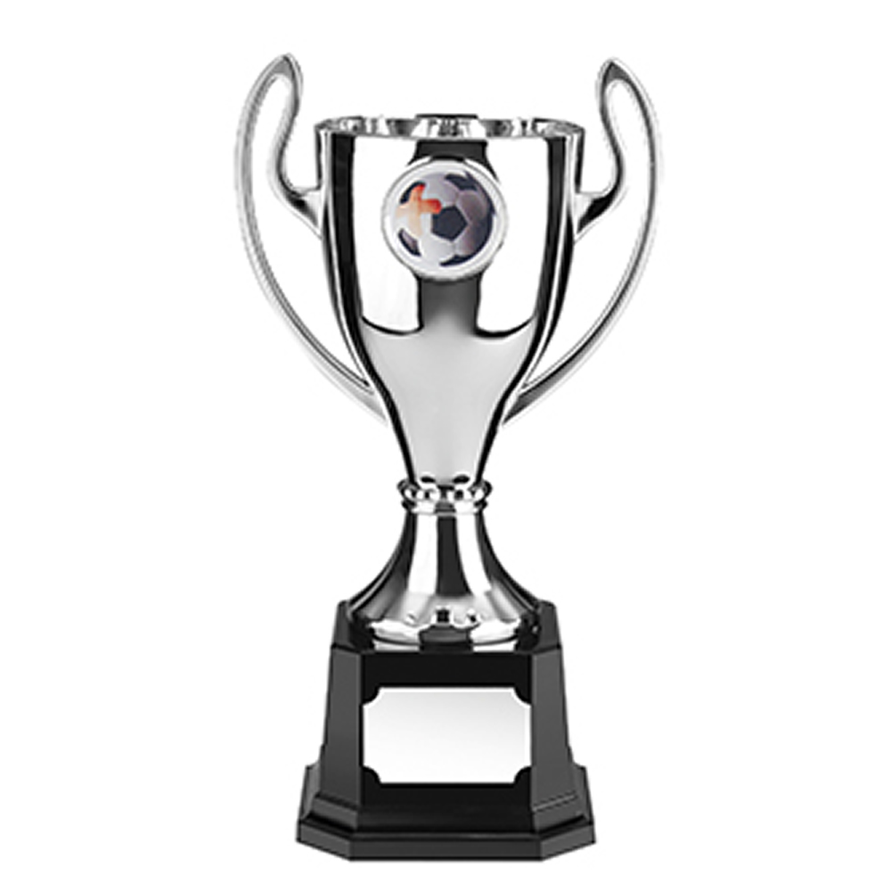 7 Inch Silver Finish Stadium Trophy Cup