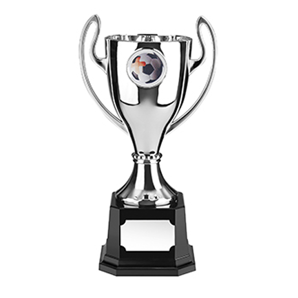 9 Inch Silver Finish Stadium Trophy Cup