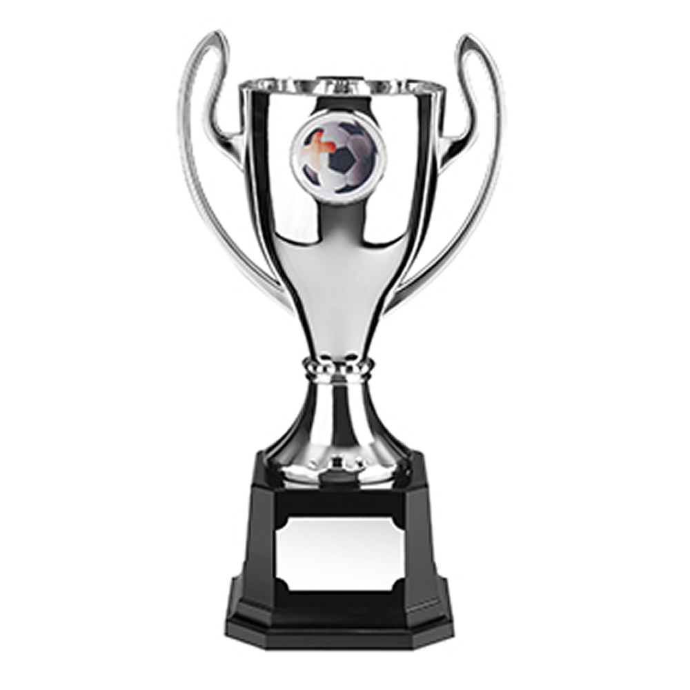 11 Inch Silver Finish Stadium Trophy Cup