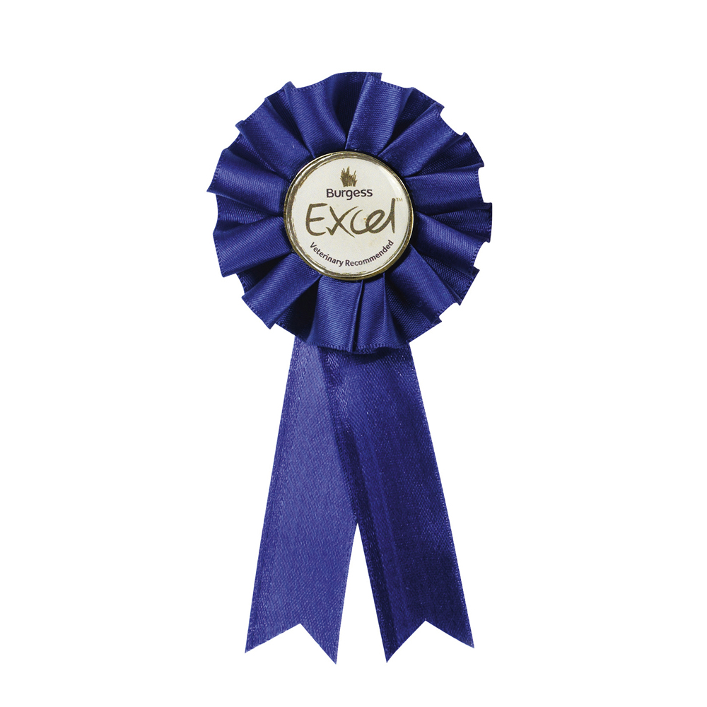 3 x 12 Inch Blue Centre Holder Equestrian Streamer Rosette