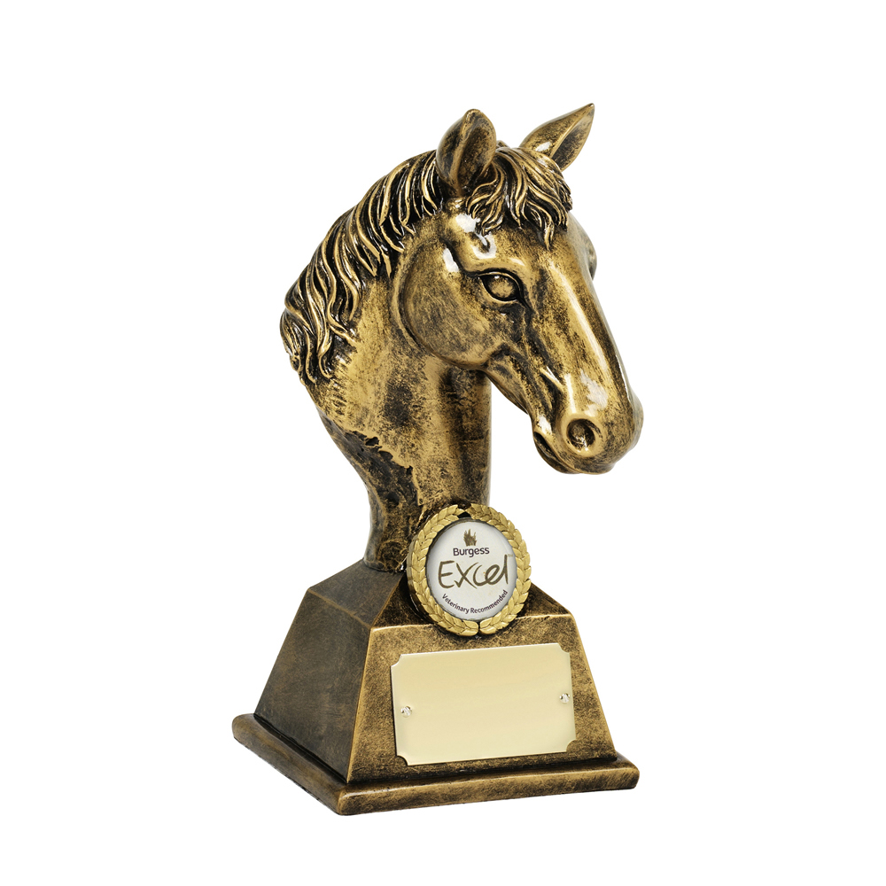 8 Inch Horse Head Bust Equestrian Resin Award