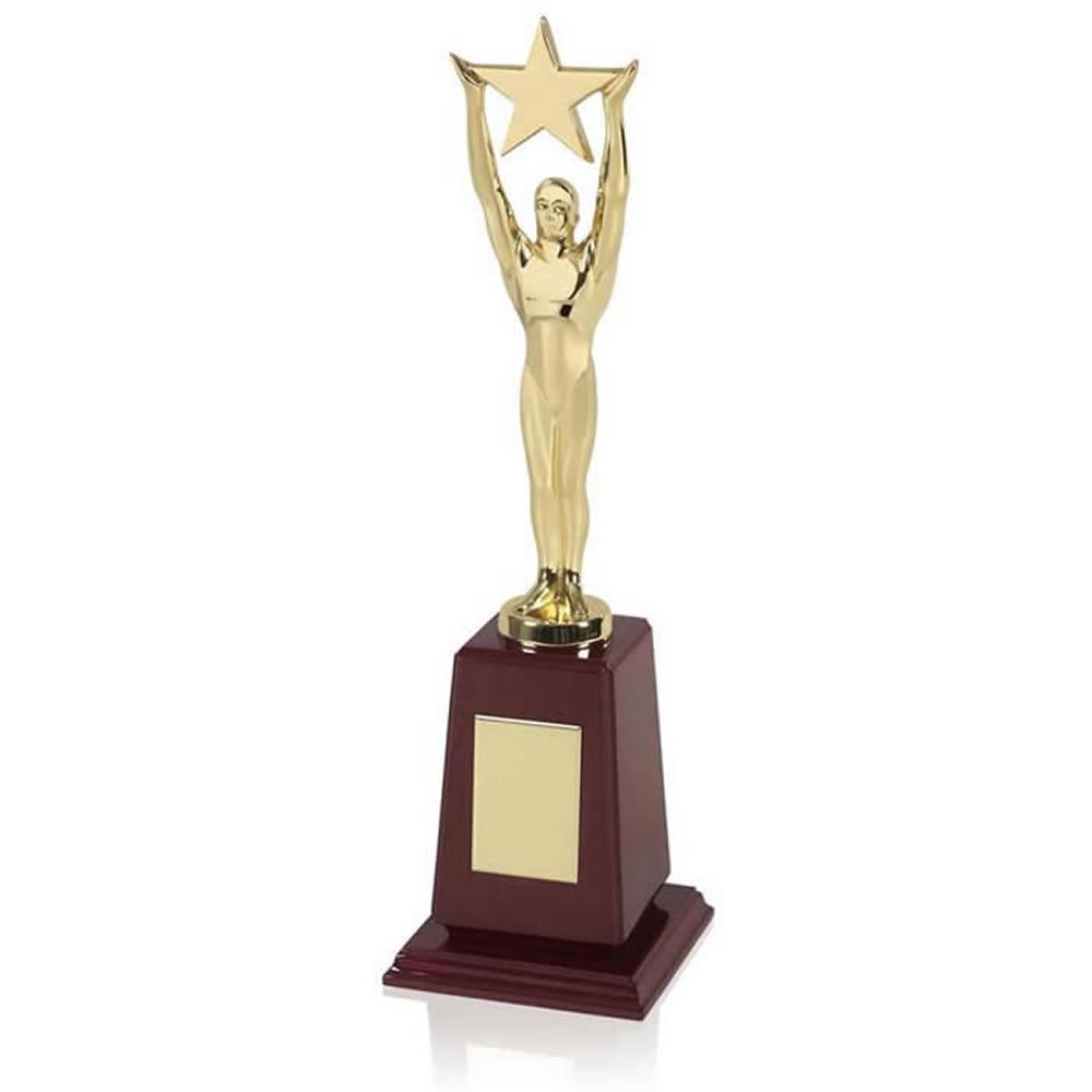 12 Inch Gold Plated Star Figure Achievement Award