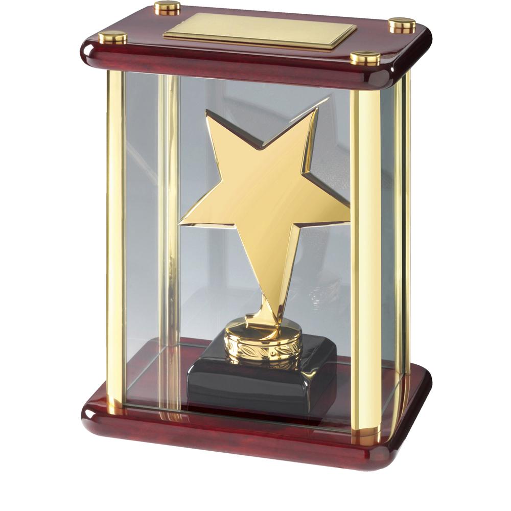 7 Inch Gold Finish Cased Timezone Star Award
