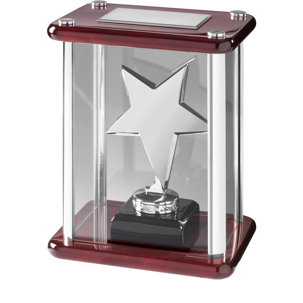 7 Inch Silver Finish Cased Timezone Star Award