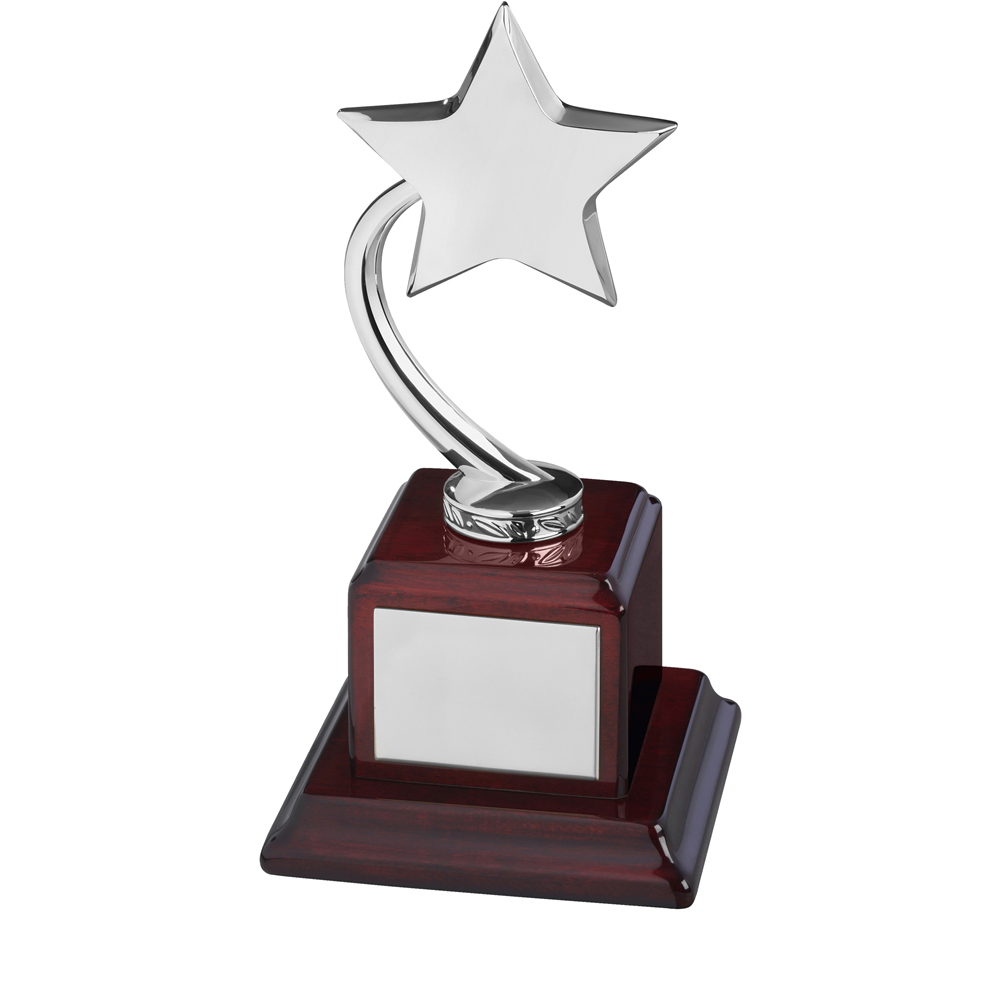 9 Inch Silver Shooting Star On Wooden Base Timezone Star Award