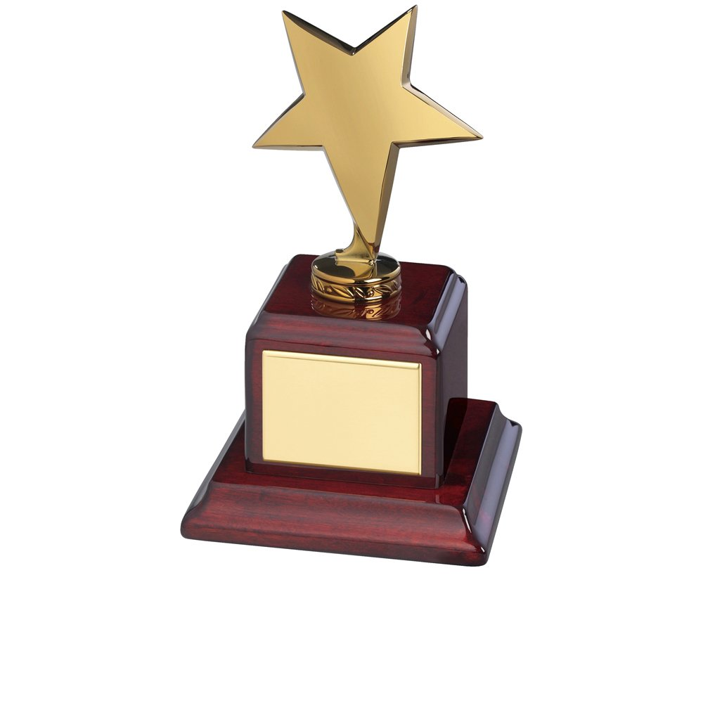 8 Inch Gold Solid Metal Timezone Star Award