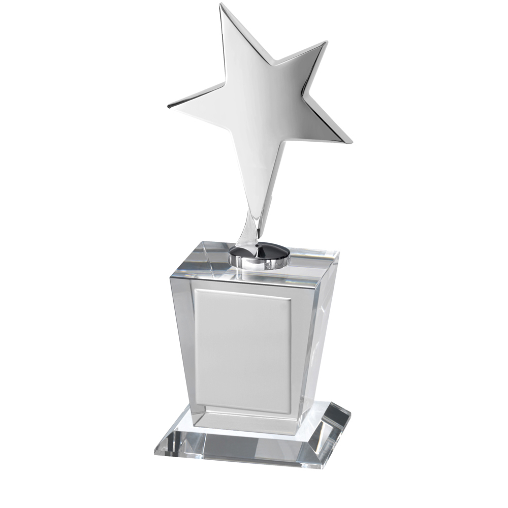 8 Inch Metal Star On Clear Timezone Award